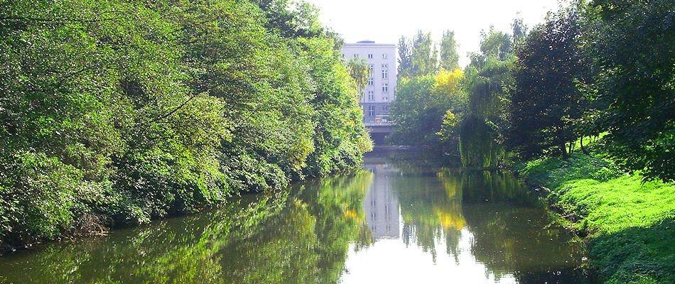 Chemnitzfluss am Falkeplatz